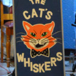 Cats whiskers